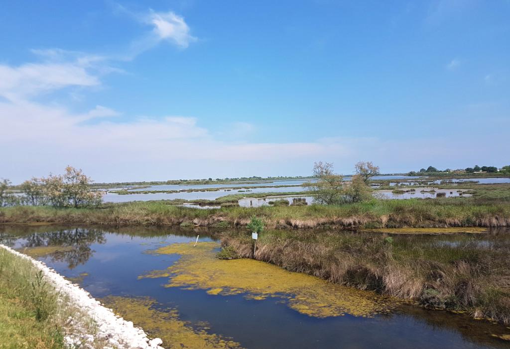 barene-e-valli-interne-nella-laguna-di-maurizio-potocnik